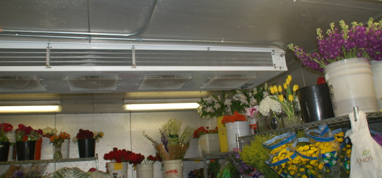 Six Commercial Walk-In Cooler & Freezer Maintenance Tips